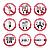 Gluten free, no gluten warning vector signs