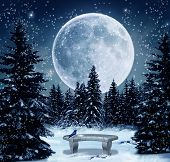 snow and big full moon