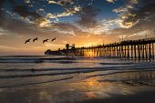 Pelicans fly near the pier during a colorful sunset reflected in the clouds and water near Oceanside, California. Oceanside is 40 miles North of San Diego, California, USA.