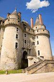 Chateau de Langeais in Loire Valley, France