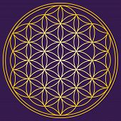 Flower of Life - Gold Color