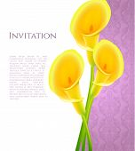 Invitation with callas flowers