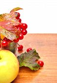 Red Viburnum Berries In The Glass And An Apple