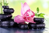 Spa stones, bamboo branches and lilac orchid on table on natural background