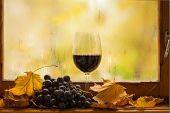 Autumn Red Wine
