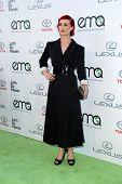 LOS ANGELES - OCT 18:  Alison Sudol at the 2014 Environmental Media Awards at Warner Brothers Studios on October 18, 2014 in Burbank, CA