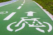 pic of bike path  - urban ciclyng lane bicycle path bike path bike lane - JPG