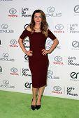 LOS ANGELES - OCT 18:  Nasim Pedrad at the 2014 Environmental Media Awards at Warner Brothers Studios on October 18, 2014 in Burbank, CA