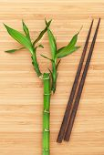 Bamboo plant and chopsticks on wooden table