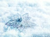 Winter and Christmas background. Beautiful sparkling christmas decoration on a white snow background. Winter and Christmas concept.