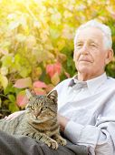 image of tabby cat  - Senior man cuddle tabby cat in his lap in garden