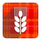 grain red flat icon isolated