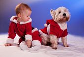 Funny small baby in Santa Claus and dog in Santa Claus costume