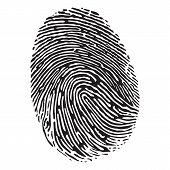 stock photo of fingerprint  - Vector black isolated fingerprint on white background - JPG