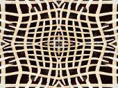 picture of kaleidoscope  - Black and orange kaleidoscope zebra fur pattern - JPG