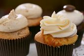 picture of sugarpaste  - Gourmet cupcakes baked and frosted with icing vanilla - JPG