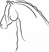 Stylized Friesian Horse Vector