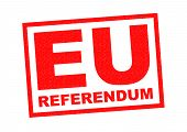 stock photo of mandates  - EU REFERENDUM red Rubber Stamp over a white background - JPG