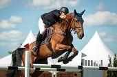 Постер, плакат: Equestian sports