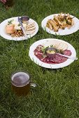 image of nic  - Brunch in the grass in San Francisco with beer salami and potatoes - JPG