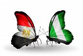 picture of nigeria  - Two butterflies with flags on wings as symbol of relations Egypt and Nigeria - JPG