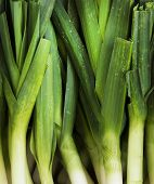 stock photo of green onion  - Spring onions also known as salad onions - JPG