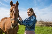 pic of beautiful horses  - Happy beautiful brunette taking care of her domestic horse outdoors - JPG