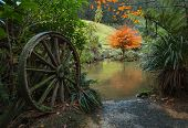 stock photo of wagon wheel  - One old wagon wheel by a pond in winter - JPG