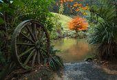 foto of wagon wheel  - One old wagon wheel by a pond in winter - JPG