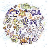picture of shell-fishes  - Sea life animals circle set - JPG