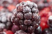 image of frozen  - Macro shot of a frozen blackberry on other frozen berry fruits - JPG
