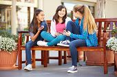 picture of tweenie  - Group Of Girls Sitting In Mall Using Mobile Phones - JPG
