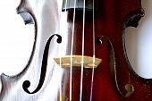 pic of violin  - Closeup of violin strings and f holes - JPG