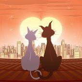 Casal de gatos - ilustração vetorial
