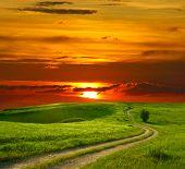 Paisaje de verano con hierba verde, la carretera y la puesta del sol