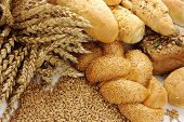 Wheat, grain and various buns and rolls