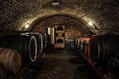 Wine barrels in traditional wine cellar