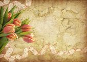 Grunge background with tulips