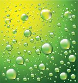 Dew drops vector background #3