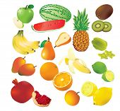 Vector set of 14 fresh fruits.