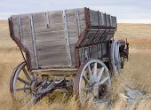 image of horse plowing  - antique wooden wagon - JPG