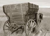 Wagon Sepia