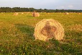 Hay Bales with girl shadow