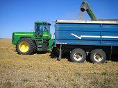Filling Grain Truck_