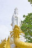 White Guan Yin On The Golden Dragon