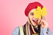 Autumn Mood. Autumn Time. Pretty Woman With Autumn Yellow Maple Leaf. Autumn Fashion. Portrait Of Sm poster