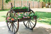 A Wheelbarrow Wooden Decoration In A Garden. Garden Decoration Concept. Sunny Day poster