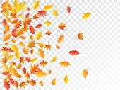 Oak And Maple Leaf Cool Background Seasonal Vector Illustration. Autumn Leaves Flying Graphic Design poster
