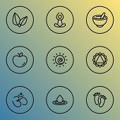 Meditation Icons Line Style Set With Ornament, Yoga, Sun And Other Fruit Elements. Isolated Vector I poster