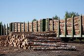 Soporte de coches de los productos básicos, transporte de madera en un almacén
